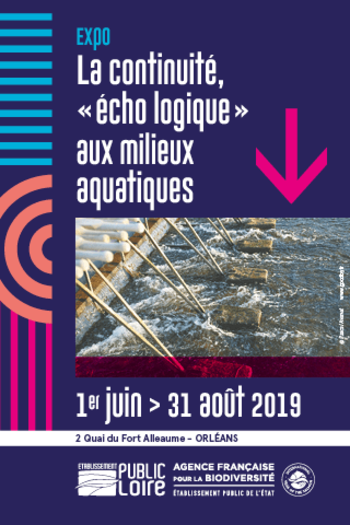 Xl expo 2019 presse la rep 320x480